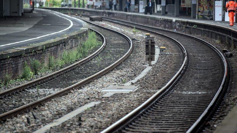 Allemagne: il saisit un enfant au hasard sur le quai et se jette sous le train avec lui