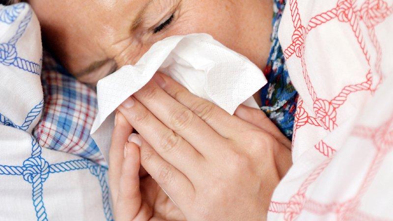 Le nombre de consultations pour des cas de grippe a fortement diminué.