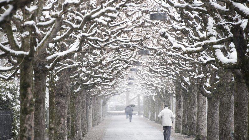 Météo: c'est le premier jour du printemps! Le froid va-t-il enfin s'arrêter?