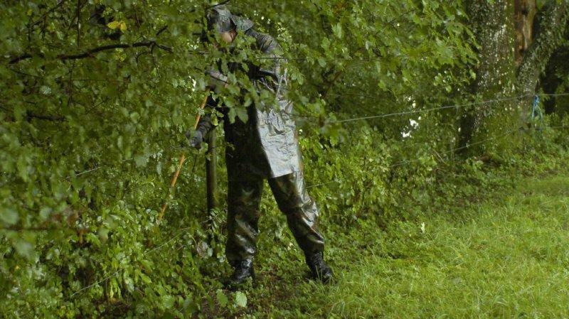 Thurgovie: 3 arrestations après la découverte du cadavre d'une femme en forêt