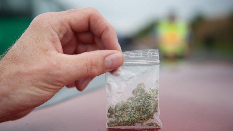 Valais: tolérance zéro en matière de détention de cannabis