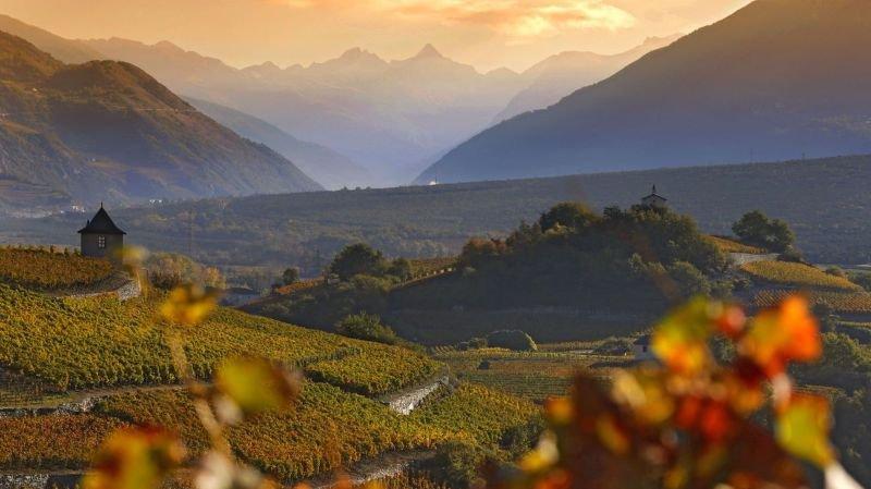 Salquenen, ses vignes et son Grand cru, le premier de Suisse qui fête cette année son 30ème anniversaire.
