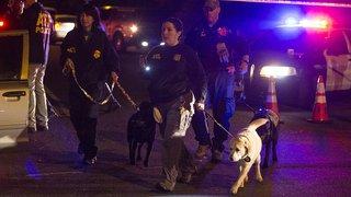 Deux blessés dimanche dans un nouveau colis piégé au Texas