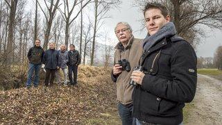 Granges: ils se mobilisent pour les oiseaux du lac de la Brèche
