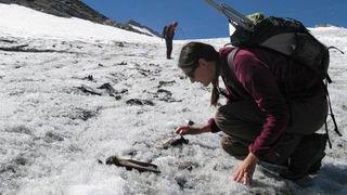 Valais: l'itinéraire de nos ancêtres attesté par l'archéologie glaciaire