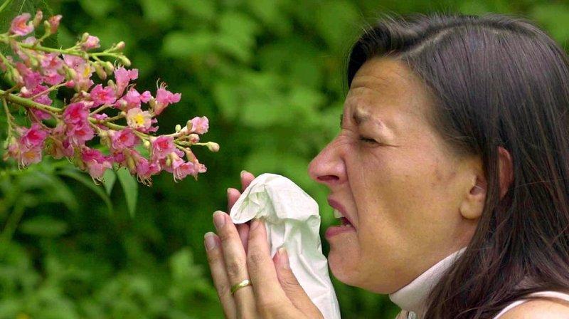 Lucerne: une start-up veut mesurer les pollens dans l'air en temps réel