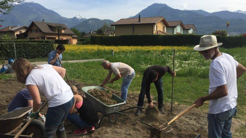 Collombey-Muraz: un jardin partagé vient de voir le jour