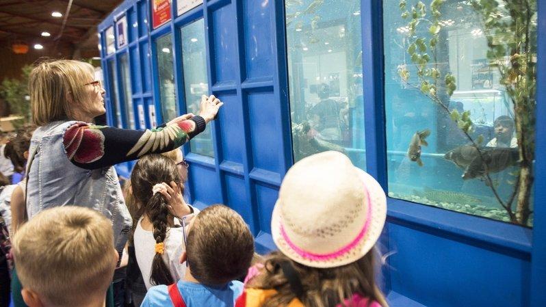Un programme pédagogique est organisé chaque année pour les enfants.