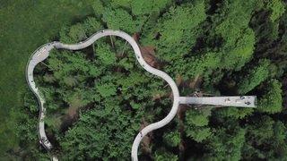 Saint-Gall: ouverture d'un sentier entre les cimes des arbres à Mogelsberg