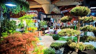 Présentant les dernières tendances, le salon Prim'Vert ouvre ses portes cette semaine à Martigny