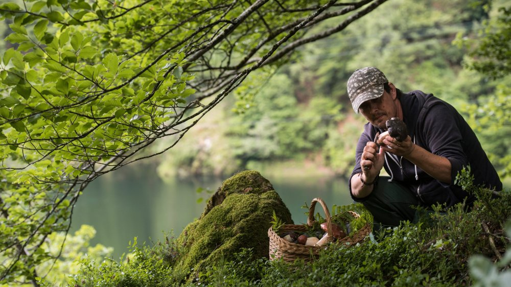 Le parc du Locarnese ne serait interdit à la chasse, la pêche ou la cueillette que sur 28% de ses 218 kilomètres carrés de superficie.