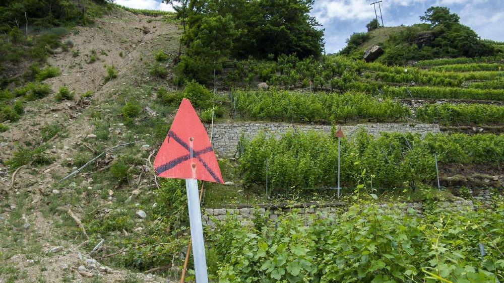 Ces vignes situées en aval de la route de la Forclaz et les murs en pierres sèches qui les soutenaient ont été entièrement emportés par les intempéries de janvier 2018.