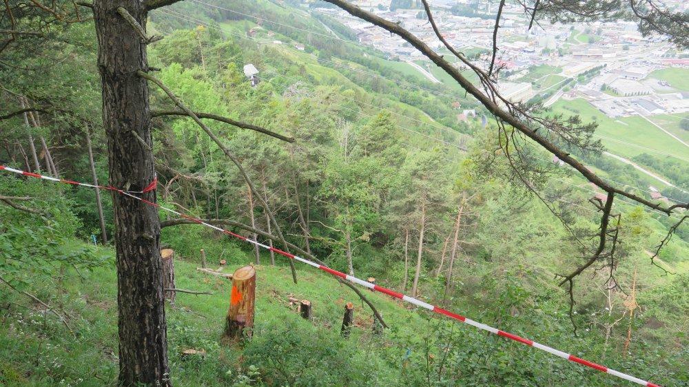 Les coupes de végétation ont commencé à Vex. La construction des fondations de pylône devrait commencer en août.