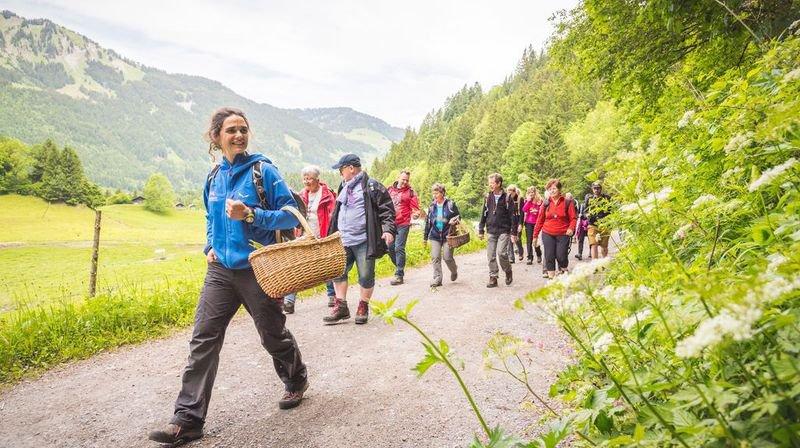 Accompagnatrice en montagne, Nathalie Nemeth Défago emmènera les participants à la découverte des secrets et des saveurs des plantes sauvages.