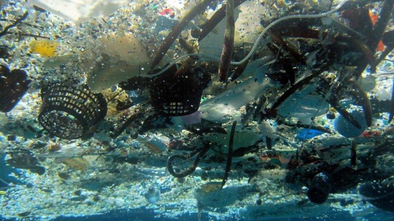 """La nouvelle """"charte"""" prévoit de passer au recyclage de 100% des plastiques à l'horizon 2030."""