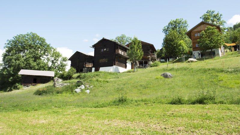 Le site d'Ossona a 10 ans et accueille les touristes qui peuvent aussi voir les agriculteurs dans leur quotidien.