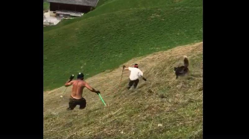 Uri: des amis skient en plein été sur du foin, leur vidéo devient virale
