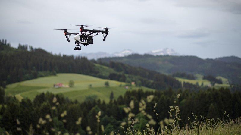 Les drones pénètrent dans des zones jusqu'alors préservées et dérangent les oiseaux et d'autres animaux sauvages.