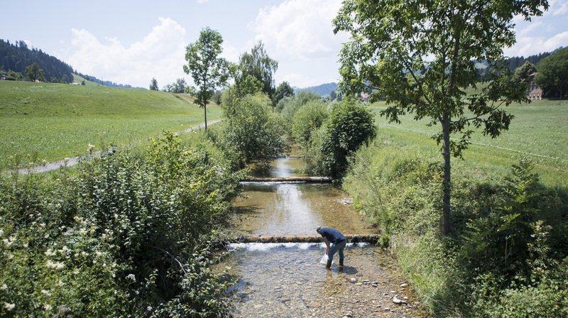 Sécheresse: le niveau des cours d'eau en dessous de la moyenne