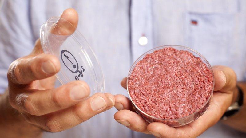 """Résultat de recherche d'images pour """"viande cultivée en laboratoire in vitro"""""""