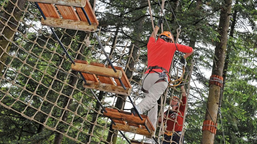 Nos bons plans pour s'amuser dans les arbres