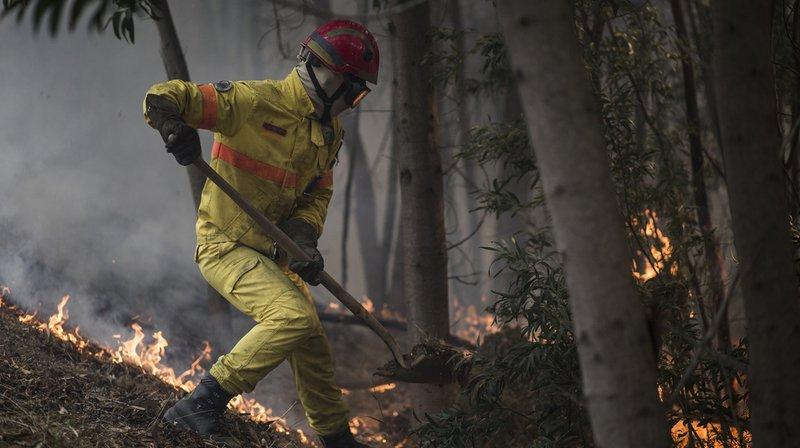 Portugal: plus de 1150 pompiers mobilisés pour lutter contre un incendie dans le sud du pays