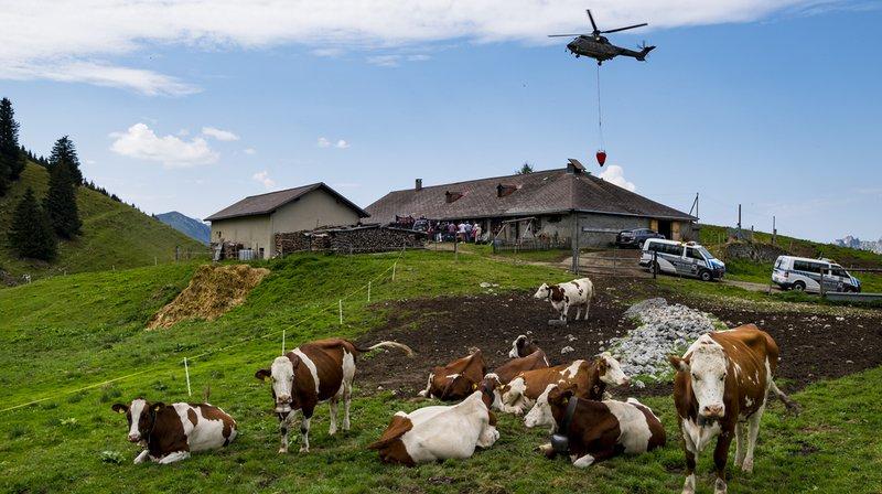 Un hélicoptère Super Puma de l'Armée suisse apporte de l'eau dans un réservoir pour abreuver les vaches d'un paysan sur l'alpage de la Culand au dessus de Rossinière.