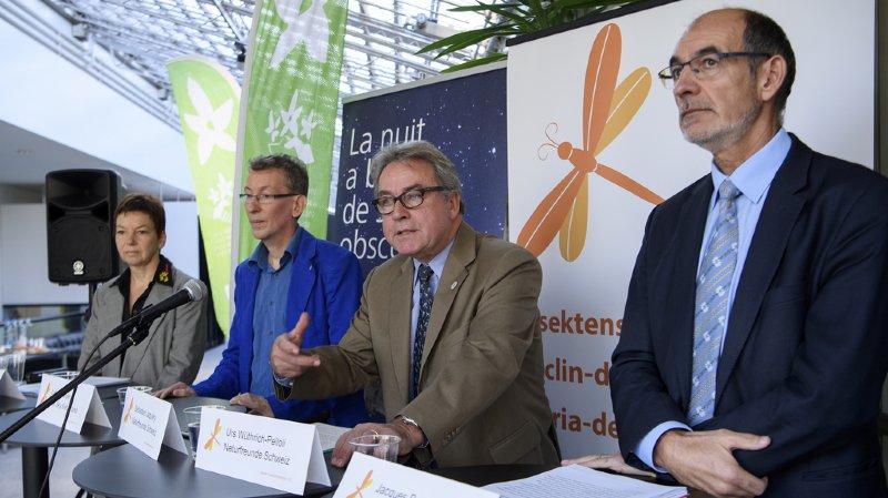 Environnement: lancement d'une pétition pour sauver les insectes