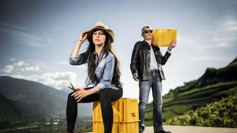 En Valais, les vendanges s'ouvrent au grand public