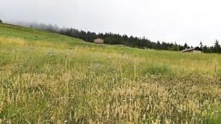 LAT: le Valais ne peut plus se permettre d'attendre