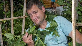 Magazine «Terroirs»: à Salvan, on soigne la mise en bocal des cornichons