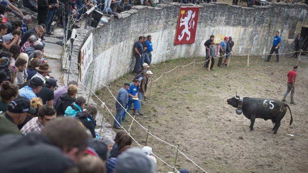 Le combat de la Foire du Valais aura-t-il lieu dans l'arène de Martigny en 2019? La question est posée.