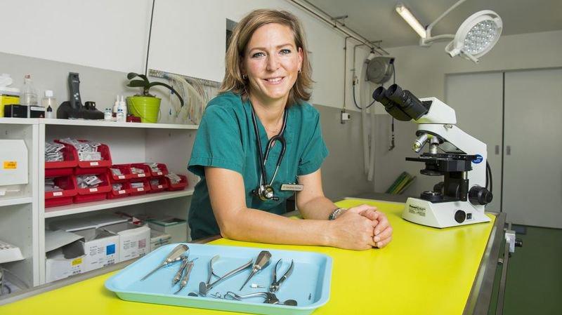 Caroline Saillen, médecin vétérinaire.