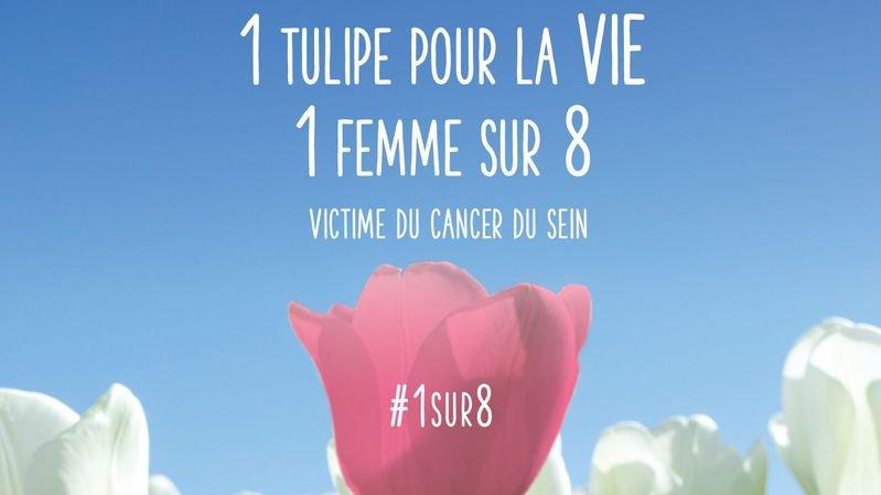 En Suisse, une femme sur huit est atteinte du cancer du sein.