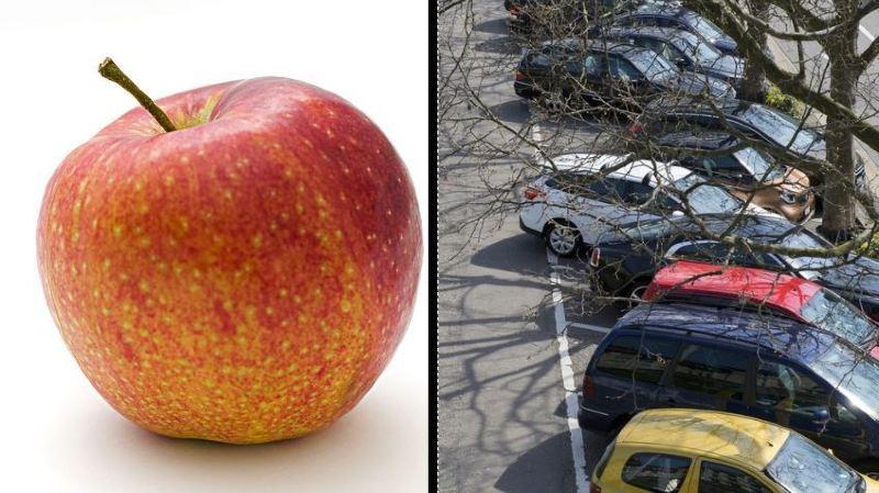 Manger une pomme sur un parking a coûté 40 francs à cet automobiliste argovien