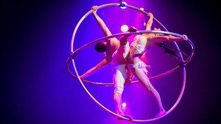 Le cirque Knie débarque tout bientôt en Valais, découvrez le programme