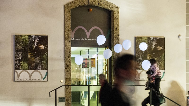 C'est beau un musée la nuit. Rendez-vous ce samedi 10 novembre pour la traditionnelle Nuit des musées, treizième du nom.