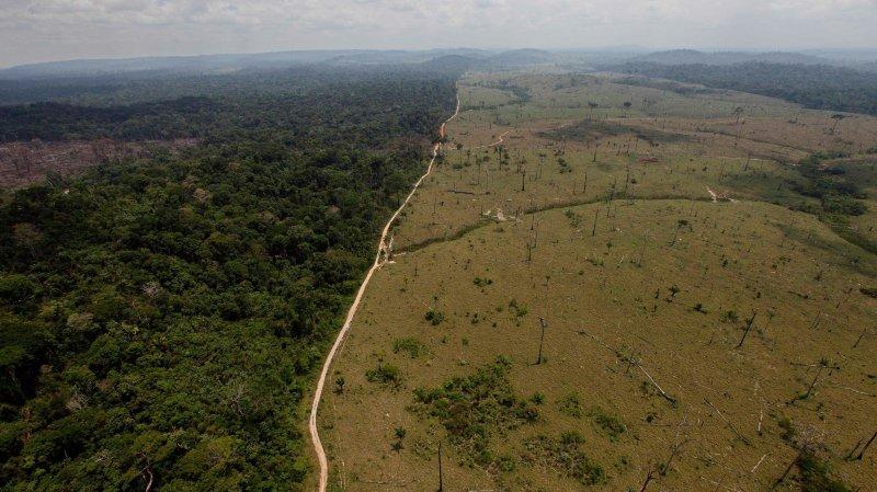 L'Amazonie en jeu en cas d'élection de Jair Bolsonaro