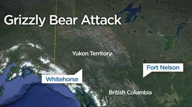 Un bébé et sa mère tués par un grizzly — Canada