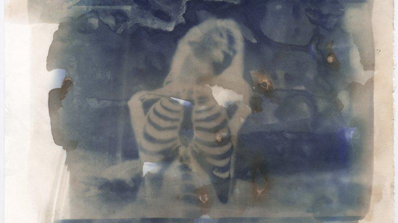 Un cyanotype d'Andrea Ebener qui illustre bien la thématique de cette Manufacture des rêves