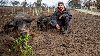 L'agroécologie  au secours du climat