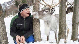 Il était une fois Noël: Rudolph et Cie, les rennes de Reto Summermatter