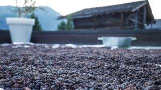 Saint-Luc: la vinothérapie développée dans un spa d'altitude