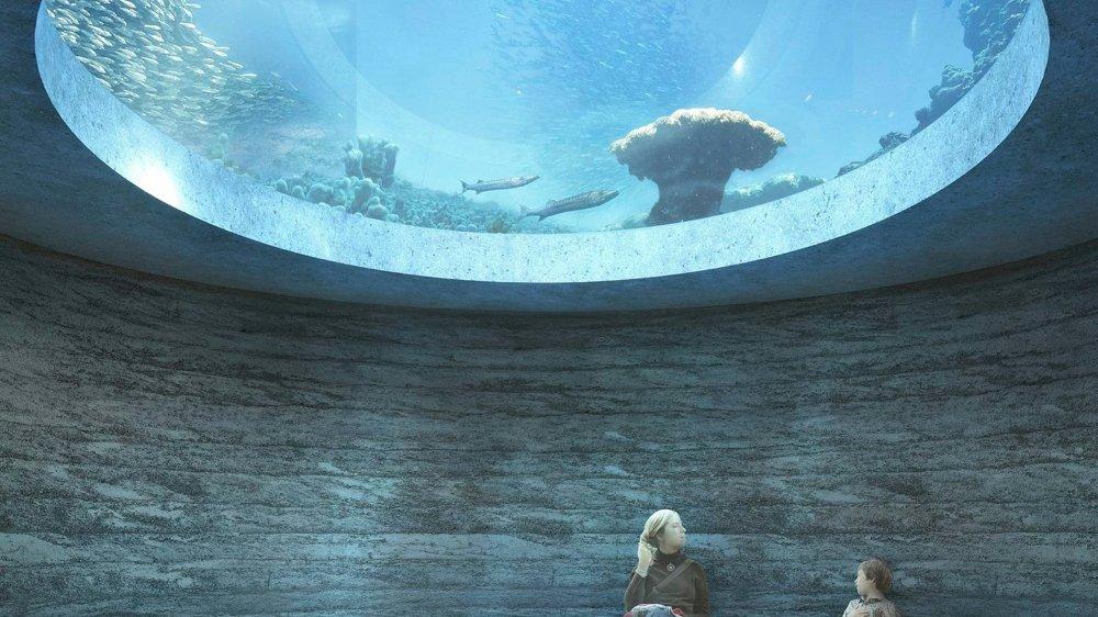 Aquariums à l'index