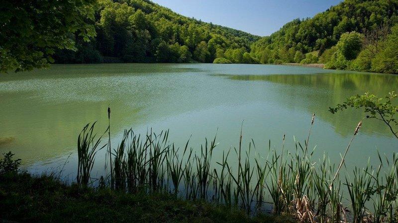 L'étang de Lucelle (Jura) à la belle saison.