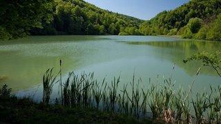 Jura: découverte du corps d'un septuagénaire dans l'étang de Lucelle