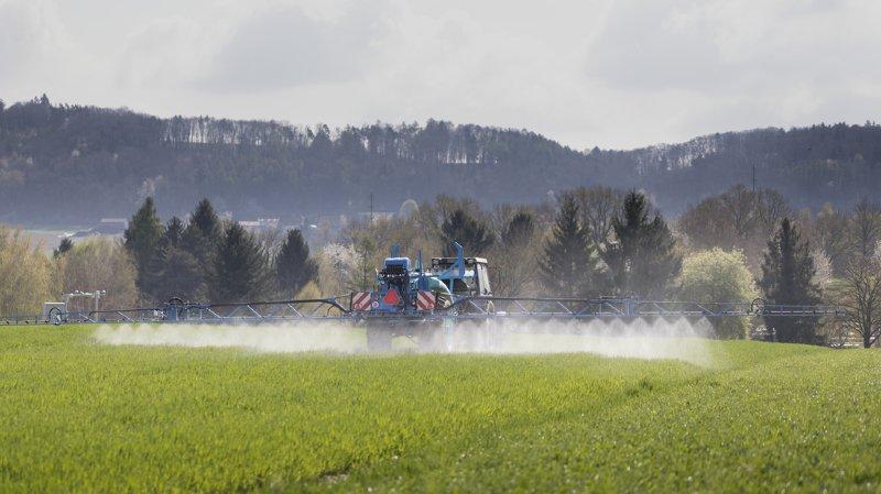 Politique agricole 2022: le projet du Conseil fédéral ne convainc par les partis et acteurs concernés