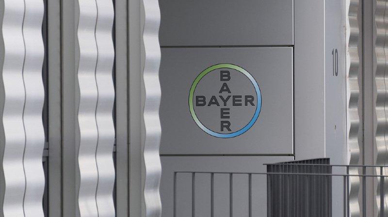 Bayer voit son bénéfice fondre de 77%, l'achat de Monsanto pèse