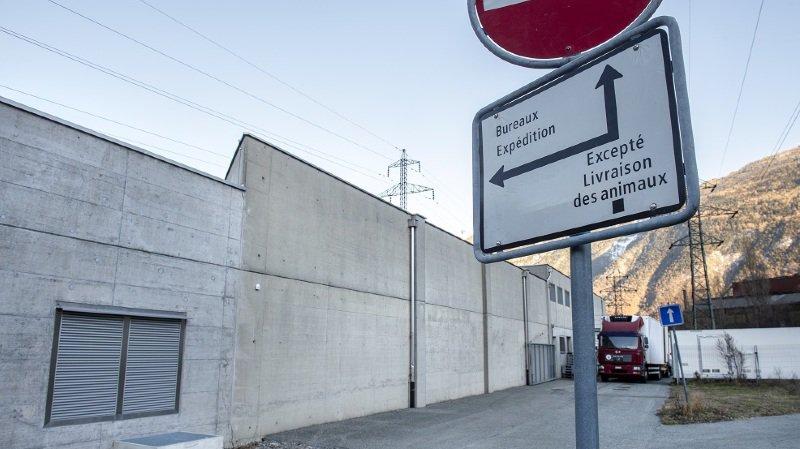 PEA va bien donner une suite pénale à l'affaire de l'abattoir de Martigny