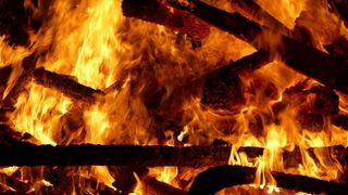Seize mille pintades périssent dans un incendie en Bretagne